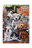 Country Pups and Kittens II Giclee Print by Jenny Newland