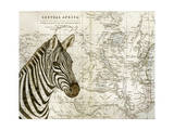 Burchell's Zebra Giclee Print by Jane Wilson