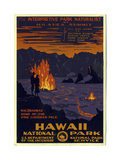 Hawaii National Park Giclée-tryk