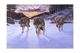 Born to Be Wild Giclee Print by Bruce Dumas
