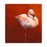 Flame Bird Flamingo Giclee Print by Jeremy Paul
