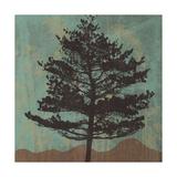 Evergreen Giclee Print by Erin Clark
