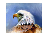 Eagle Portrait Giclee Print by Spencer Williams