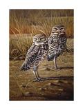 Burrowing Owls Giclee Print by Wilhelm Goebel