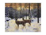 Evening Silence Giclee Print by Jeff Tift