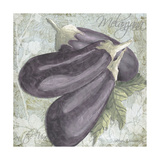 Buon Appetito Eggplant Giclee Print by Megan Aroon Duncanson