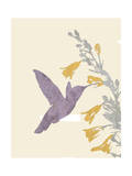Hummingbird and flowers Giclee Print by Karen Williams