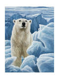 Ice Bear Polar Bear Giclee Print by Jeremy Paul