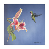 Hummingbird and Lily Giclee Print by Rusty Frentner