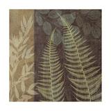 Ferns I Giclee Print by Erin Clark
