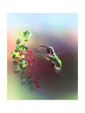 Le pouvoir des fleurs Reproduction procédé giclée par Spencer Williams