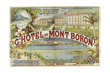Hotel Mont Baron Giclee Print