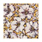 Hibiscus Giclee Print by li bo