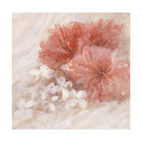Hibiscus I Giclee Print by li bo