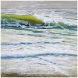 Shoreline study 4 Prints by Carole Malcolm