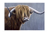 Highland Bull Rainy Day Giclee Print by Jeremy Paul