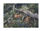 Fawns and Flowers Giclee Print by Jeff Tift