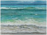 Shoreline study 10 Prints by Carole Malcolm