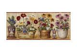 Pots de fleurs Impression giclée par Lisa Audit