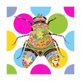 Fly Giclee Print by Teofilo Olivieri