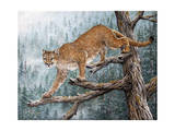 High Climber Giclee Print by Jeff Tift
