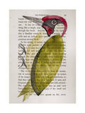 Green Woodpecker Giclee Print by Jane Wilson