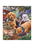 Helpful Garden Paws Giclee Print by Jenny Newland