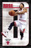 Chicago Bulls - D Rose 14 Affiches