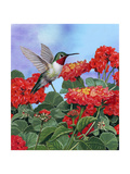 Hummingbird and Flower 2 Giclee Print by William Vanderdasson
