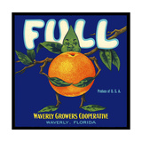 Full Florida Citrus Giclee Print