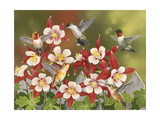 Hummingbird Feeding Frenzy Giclee Print by William Vanderdasson