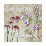 Herbs 2 Giclee Print by Megan Aroon Duncanson