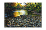 Fall Again Giclee Print by Bruce Dumas