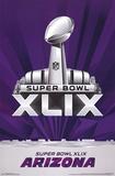 Super Bowl XLIX - Logo Plakat