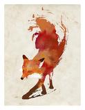 Vulpes Vulpes Poster af Robert Farkas
