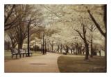 Springtime Stroll Print by Natalie Mikaels