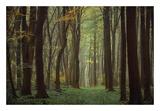 Lars Van de Goor - Arriving Nowhere - Poster