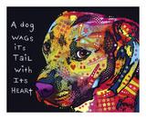 Gratitude Pitbull Plakater av Dean Russo