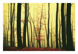 Red Leaves Posters by Lars Van de Goor