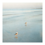 Two Birds on Beach Posters by John Juracek