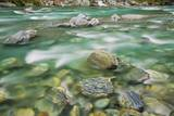Brook Impression near Thunder Creek Fallswith Rocks Photographic Print by Frank Krahmer