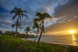 Sunset on Southern Maui Beach with Palm Trees Photographic Print by Terry Eggers