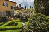 Villa La Foce Garden Photographic Print by Guido Cozzi