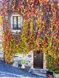 Autumn Foliage around Tuscan Villa Photographic Print by Terry Eggers
