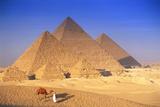 Pyramids in Egypt Fotografisk tryk af Peter Adams