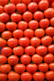 Tomatoes at Boqueria Market in Barcelona Photographic Print by Guido Cozzi