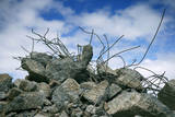 Construction Rubble Photographic Print by Chris Henderson