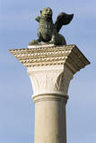 The Winged Lion of Venice atop the Column of San Marco Photographic Print by Paul Seheult