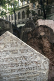 Old Jewish Cemetary Photographic Print by Paul Seheult