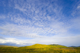 Northern British Columbia Landscape in Fall Photographic Print by Momatiuk - Eastcott